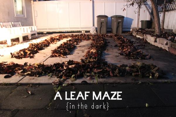 A Leaf Maze  in the dark
