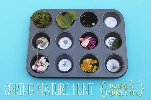 Spring Nature Hunt Using a Muffin Tin | Mama Papa Bubba